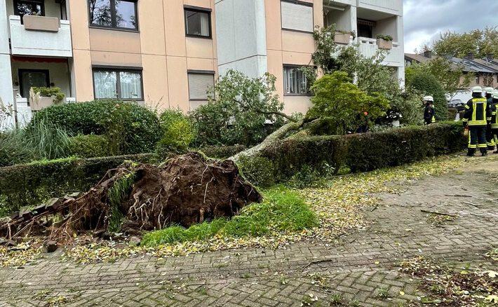 FW-Erkrath: Sturmtief beschert der Feuerwehr Erkrath viel Arbeit