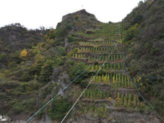 FW Frankenthal: Erneuter Unterstützungseinsatz der Frankenthaler Höhenretter zu Gunsten des Weins im Ahrtal